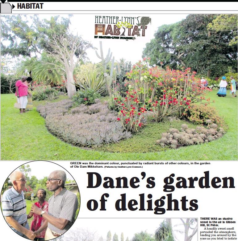 PressReader - Daily Nation (Barbados): 2017-03-09 - Dane\'s garden of ...