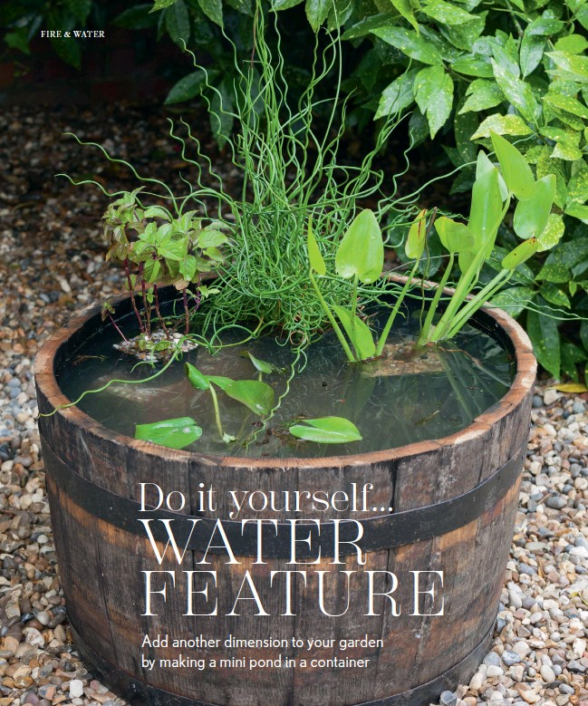 Pressreader nz house garden outdoor living 2017 12 01 do it you could also install a bubbler or fountain both of which will deter mosquito larvae solutioingenieria Image collections