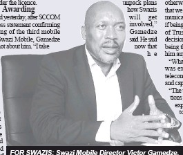 Pressreader observer on saturday 2016 12 31 this is for the for swazis swazi mobile director victor gamedze stopboris Gallery