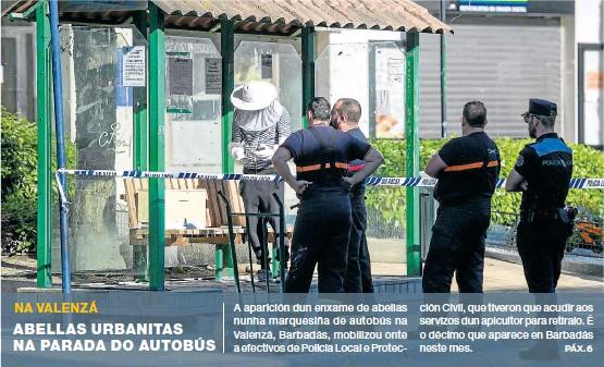 ABELLAS URBANITAS NA PARADA DO AUTOBÚS
